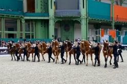 Le Cadre Noir de Saumur's beautifully choreographed equestrian 'ballet'
