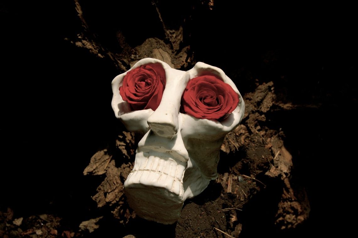 'Flowering Skulls - A Celebration of Life and Death' at Puerta Roja Gallery