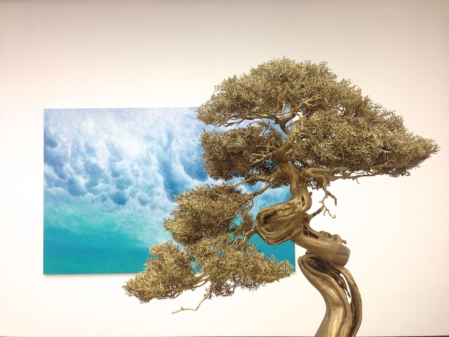 Background: 'Before and After Humans', 2013 Foreground: 'Held by Desire (Chinese Juniper 114)',  2013